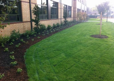 green-acres-school-landscape-maintenance