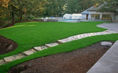 Lawn Aerating Myths – When, How, And Why To Aerate Your Lawn