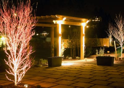LED Lights on Cedar Pergola and Coral Bark Maple