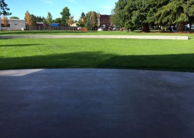 MainStLawn-CommercialPortCityPark