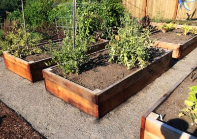 Redwood Raised Garden Beds