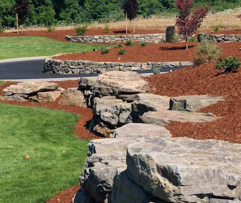 5 Secrets About Bark Mulch Everyone Needs To Know Green Acres
