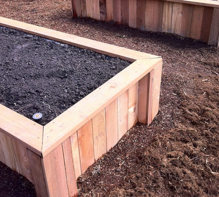 The Quickest & Easiest Way To low maintenance garden beds