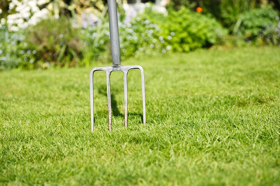 Dethatching vs Aerating: Know These 3 Simple Truths
