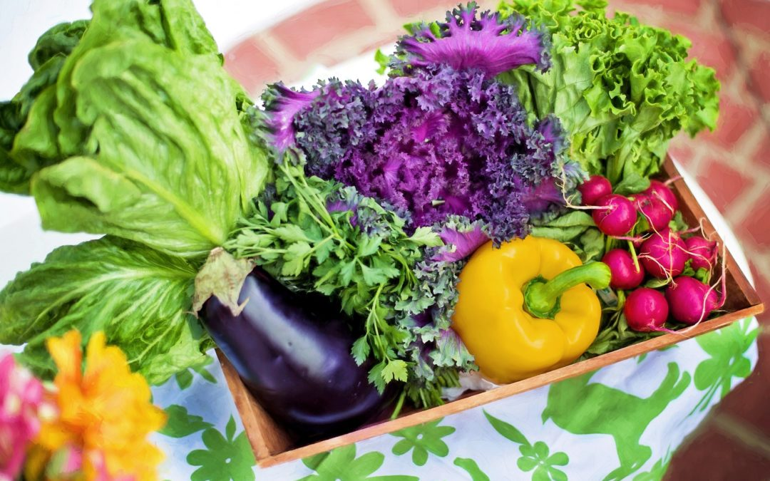 The Untold Secret To Mastering Organic Pesticides for Vegetable Gardens in Just 3 Steps