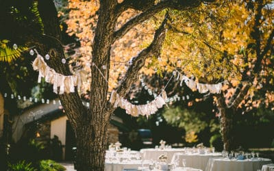 3 Reasons to Hire Green Acres to Decorate Your Outdoor Private Event