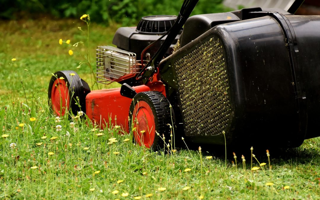 Deciding Between an Electric vs Gas Lawn Mower