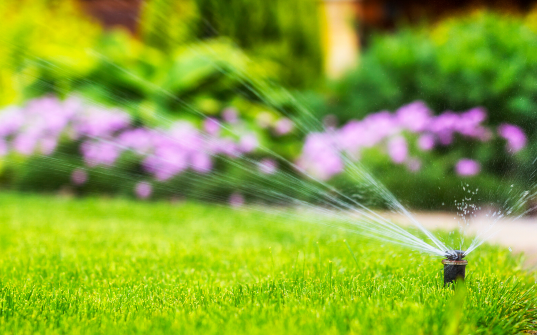 Springtime Irrigation Checklist
