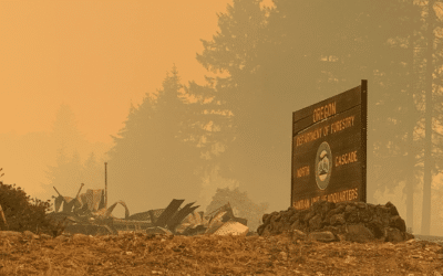 HOW YOU CAN HELP THOSE AFFECTED BY WILDFIRES