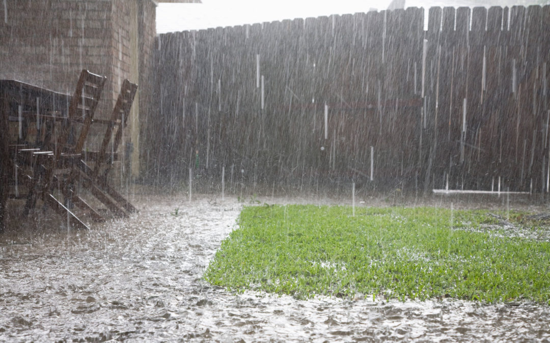 HOW TO PROTECT YOUR LAWN AND GARDEN FROM HEAVY RAIN