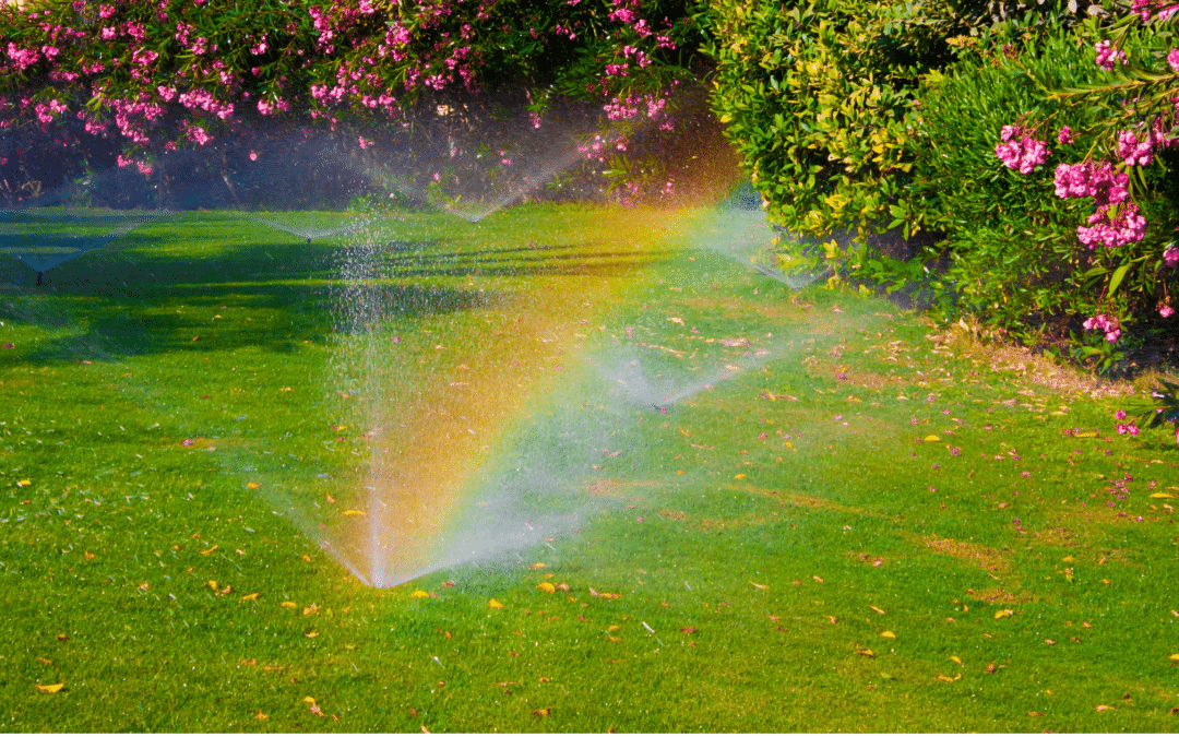 Get Your Watering and Irrigation System Ready for Summer